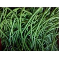 Long beans -ಊರಿನ ಅಲಸಂಡೆ 500 gm