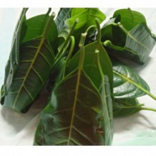 Kotte - Jackfruit Leaf Moulds (Pack of 5 )