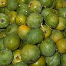 Mango - Sugar Baby Mango - ಸಾಸಿವೆ ಮಾವಿನ ಹಣ್ಣು - ಸಕ್ಕರೆ ಗುಟ್ಲೆ - 1kg