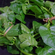 Basale Leaves - Locally grown  ಬಸಳೆ, 350 gm
